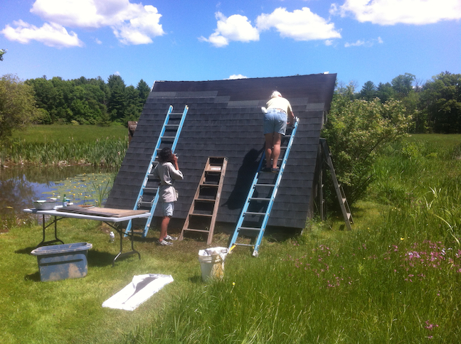 roofers in meadow3